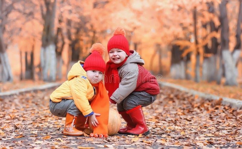Los niños están caminando en naturaleza Los niños crepusculares están dando une vuelta imagenes de archivo