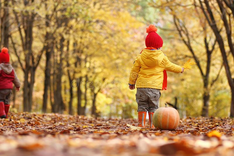 Los niños están caminando en naturaleza Los niños crepusculares están dando une vuelta foto de archivo libre de regalías