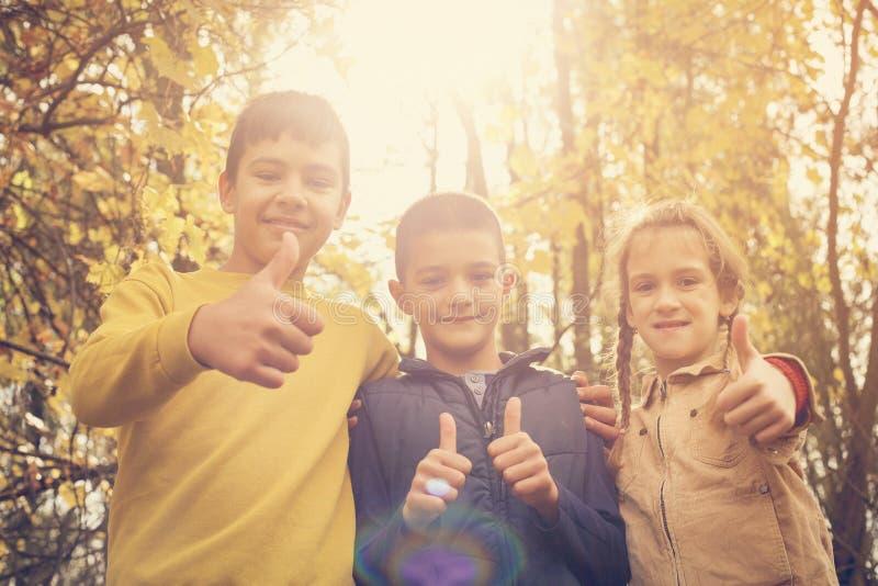 Los niños felices que muestran muy bien firman adentro el parque foto de archivo libre de regalías