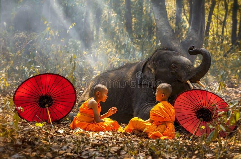 Los novatos o los monjes separaron los paraguas y los elefantes rojos Dos novatos se sientan y hablan, y un elefante grande con e imagen de archivo libre de regalías