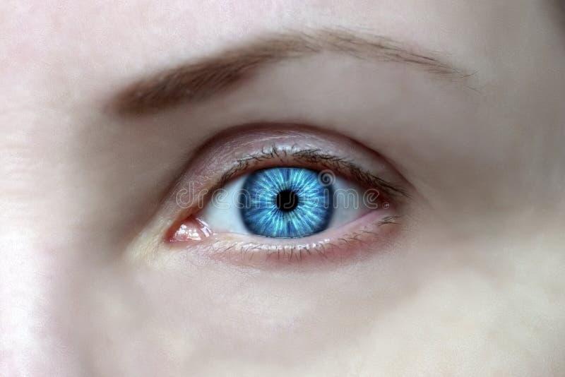 Los ojos abiertos de par en par, iris azul brillante, anticipan imagen de archivo