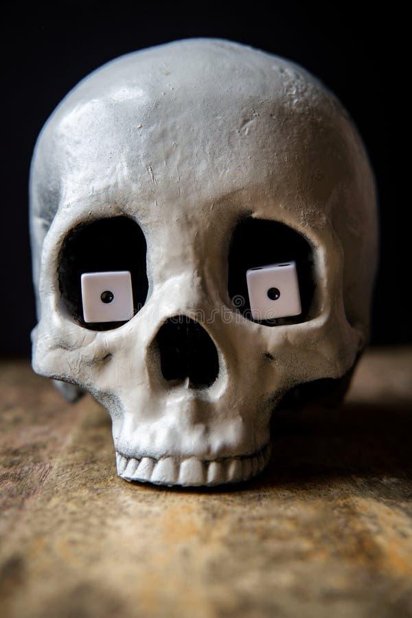 Los ojos de serpiente cortan el cráneo en cuadritos fotografía de archivo libre de regalías
