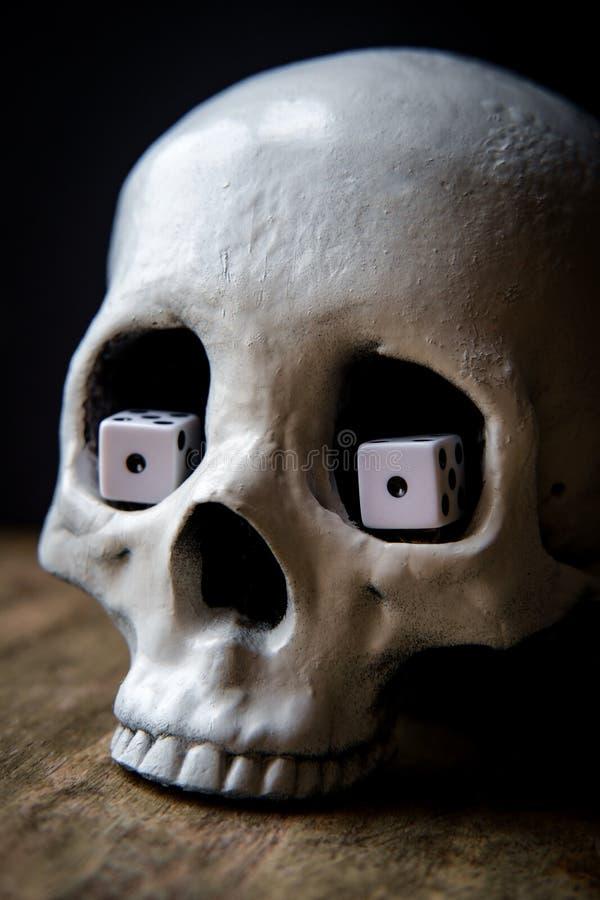 Los ojos de serpiente cortan el cráneo en cuadritos fotos de archivo libres de regalías