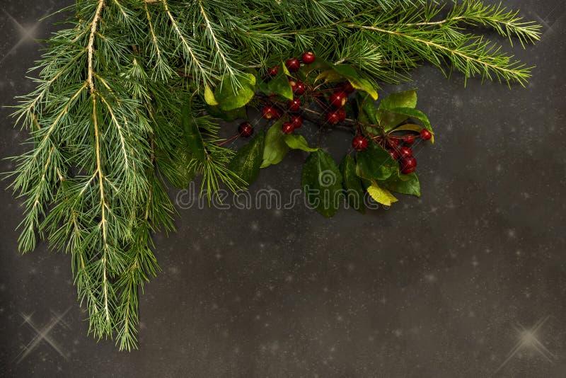 Los ornamentos de la Navidad con las pequeñas bayas rojas, las bolas brillantes, las velas rojas y un pino ramifican fotos de archivo