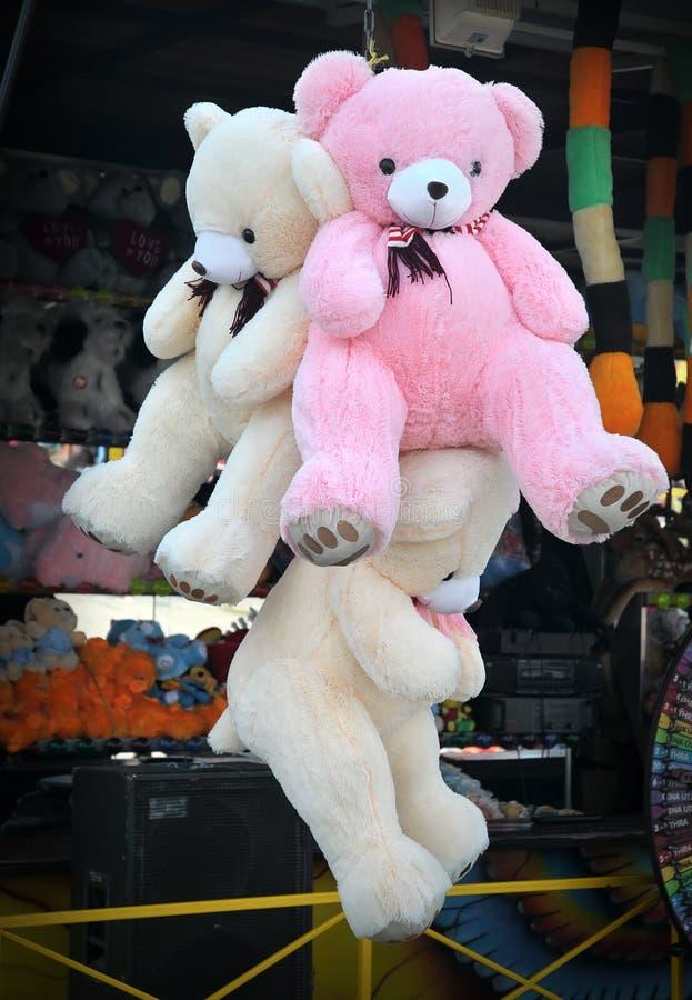 Los osos fotos de archivo libres de regalías