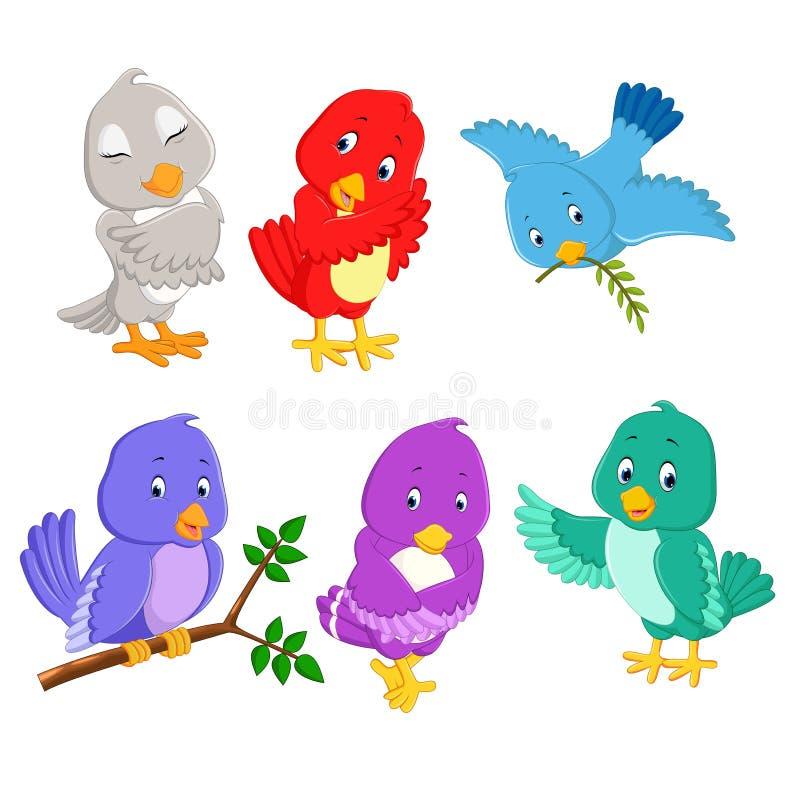 Los pájaros bonitos de la colección con diversos color y presentación ilustración del vector