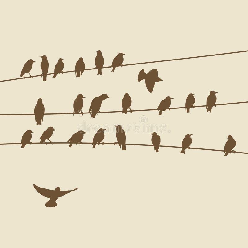 Los pájaros siluetean en los alambres stock de ilustración