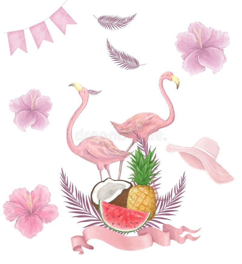 Los pájaros tropicales dibujados mano de la acuarela fijaron de flamenco Ejemplos color de rosa exóticos del pájaro, árbol de la  ilustración del vector