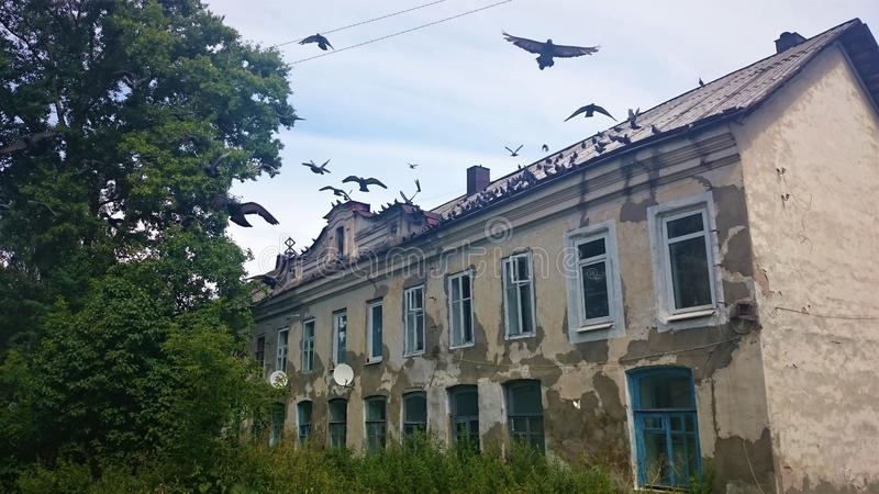 Los pájaros vuelan en el horror de una casa de piedra abandonada, Rusia fotos de archivo libres de regalías