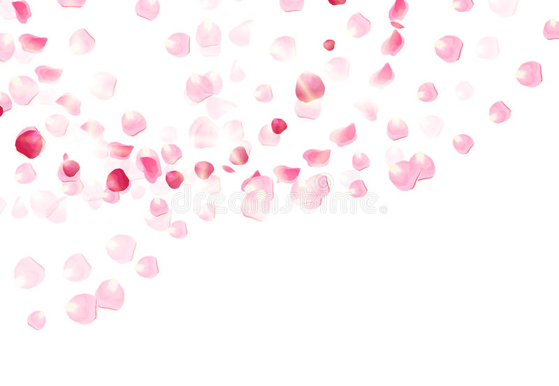 Los pétalos color de rosa rosados están volando en el aire con la tarjeta del vector de las llamaradas ilustración del vector