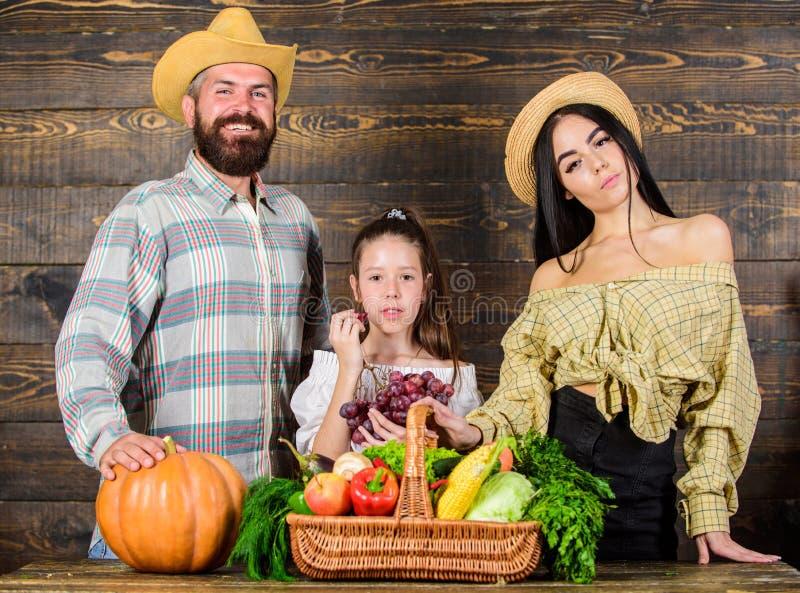 Los padres y la hija celebran la cesta de las verduras de la calabaza del día de fiesta de la cosecha Mercado rústico de los gran fotografía de archivo