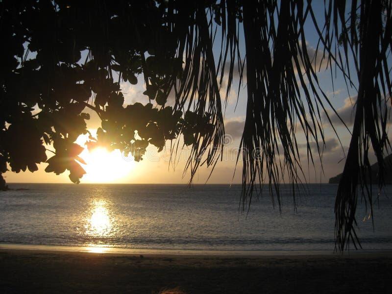 Los palmtrees de la puesta del sol del océano del paraíso de Colombia Taganga varan sueño de la arena imagen de archivo