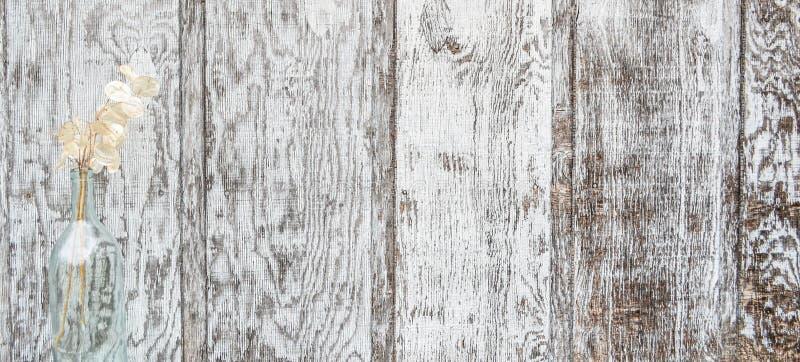 Los paneles de madera redondos traseros con los dólares de plata imagen de archivo libre de regalías