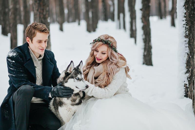 Los pares alegres están jugando con el husky siberiano en ilustraciones nevosas de la boda del invierno del bosque imagen de archivo