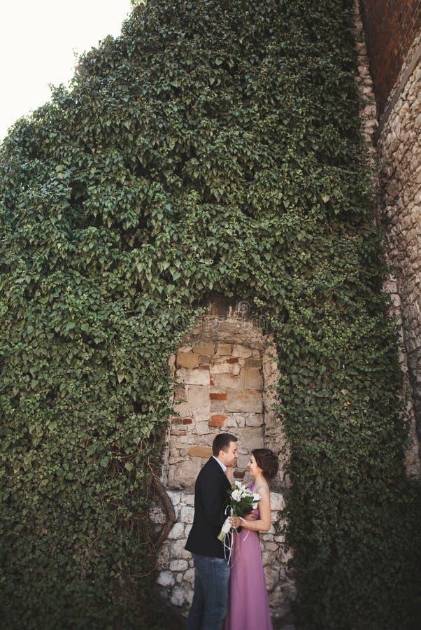 Los pares de lujo de la boda que abrazan y que se besan en las plantas magníficas del fondo, excavan cerca de castillo antiguo fotografía de archivo
