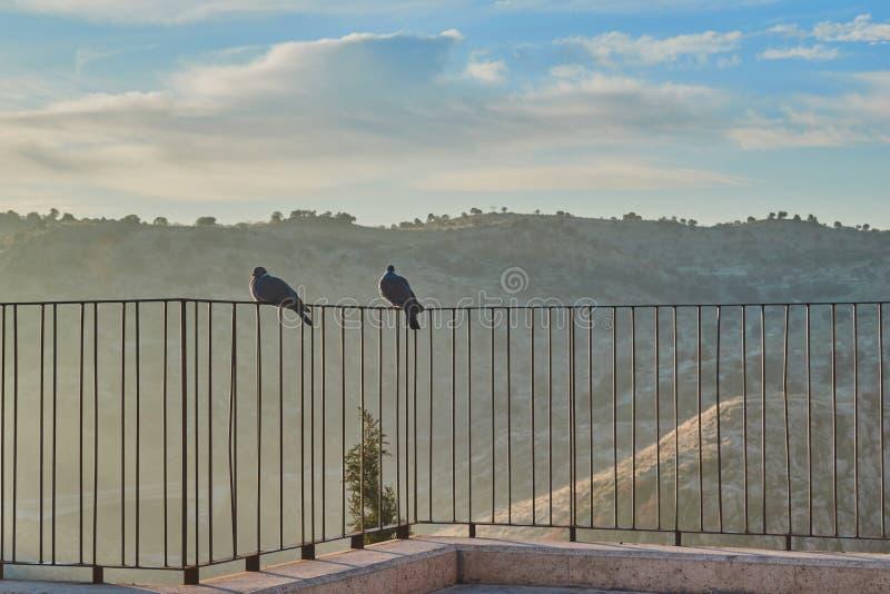 Los pares de palomas se encaramaron en la verja de un punto de vista en la salida del sol en La Mancha, España de Toledo, Castill imagenes de archivo