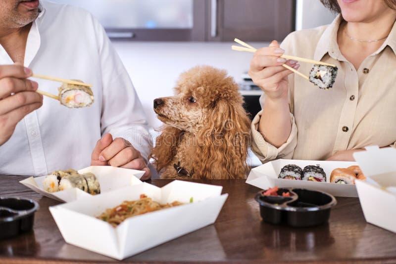 Los pares disfrutan de la comida tailandesa japonesa en casa imagen de archivo libre de regalías