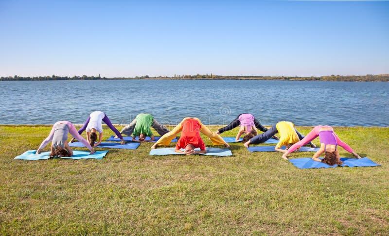 Los pares, el hombre y la mujer del árbol practican asana de la yoga en orilla del lago fotografía de archivo libre de regalías