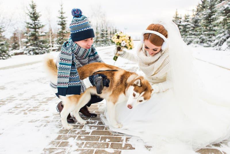 Los pares jovenes con un perro el invierno caminan imagenes de archivo