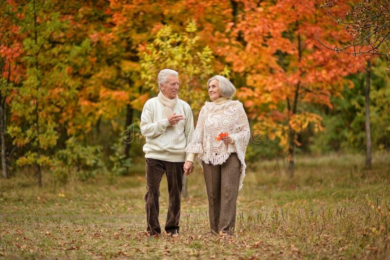 Los pares mayores hermosos que caminan en el otoño parquean imágenes de archivo libres de regalías