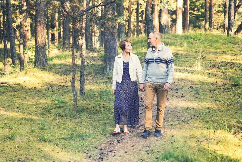 Los pares mayores que caminan en bosque arrastran llevar a cabo las manos imagen de archivo libre de regalías