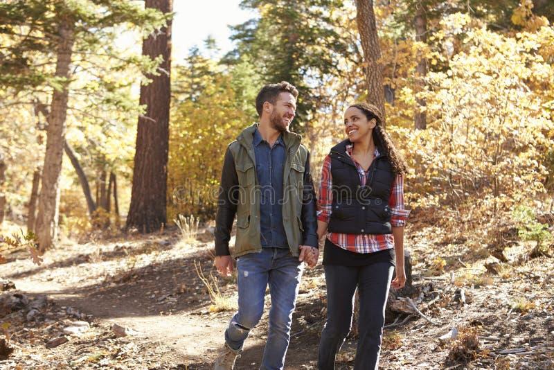 Los pares que caminan en un bosque llevan a cabo las manos y miran uno a foto de archivo