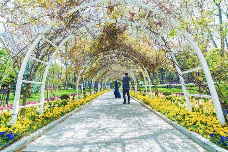 Los pares turcos jovenes están tomando fotografía en el parque de Gulhane imagen de archivo