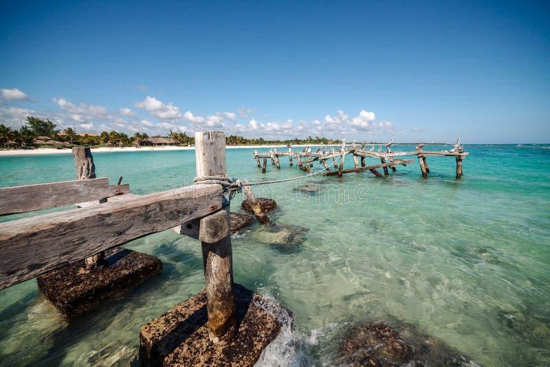 Los pelícanos se sientan en un embarcadero abandonado viejo Playa de Xpu ha, México foto de archivo