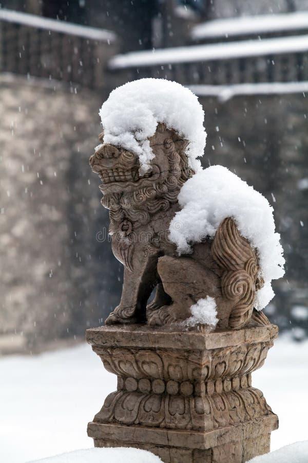 León chino en invierno imagen de archivo