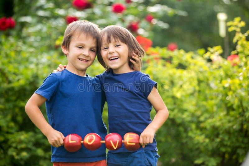 Los pequeños niños lindos, hermanos del muchacho, llevando a cabo una muestra del amor, hicieron el franco fotografía de archivo libre de regalías