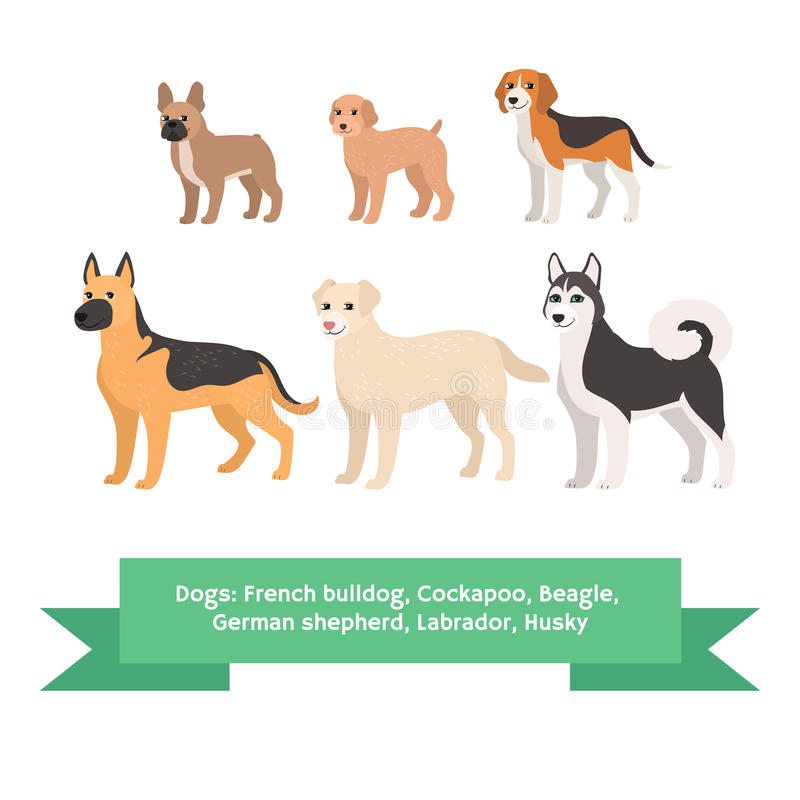 Los perros crían el sistema con el perro esquimal de Labrador del pastor alemán del beagle del cockapoo del dogo francés Ilustrac stock de ilustración
