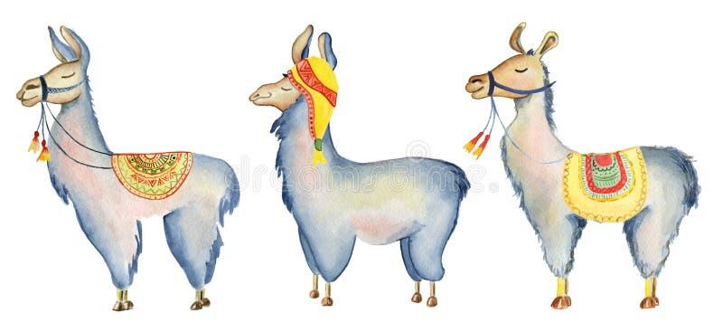 Los personajes de dibujos animados lindos de la llama fijaron el ejemplo de la acuarela, animales de la alpaca, estilo dibujado m stock de ilustración