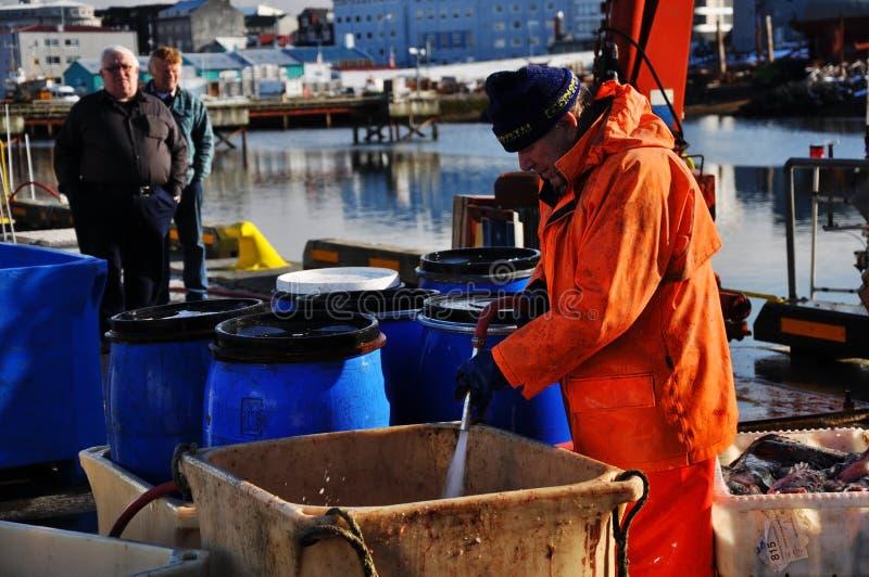 Los pescadores en Reykjavik se abrigan, Islandia fotografía de archivo libre de regalías
