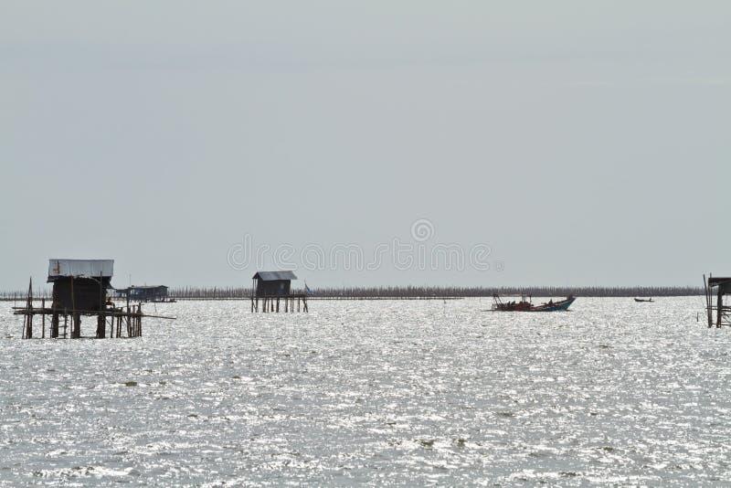 Download Los Pescadores Tailandeses Están Esperando En El Barco, Pescados, Vida Imagen de archivo - Imagen de vida, fotografía: 42428253