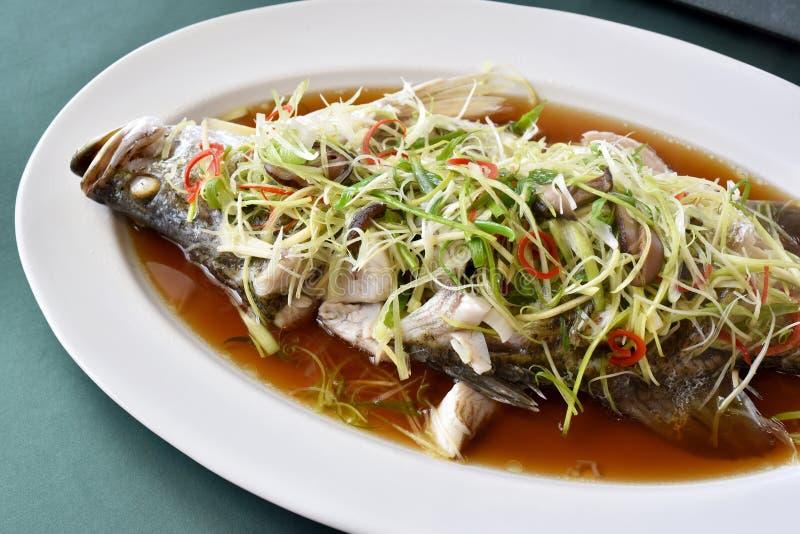 Los pescados cocieron al vapor en salsa de soja, los mordedores hervidos con el jengibre y la cebolla de la primavera cortada imagen de archivo