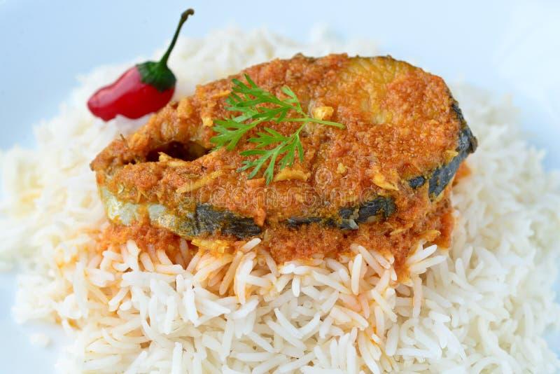 Los pescados curten y arroz foto de archivo