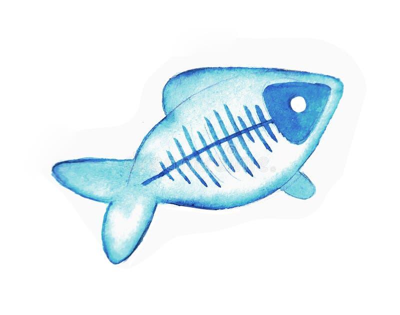 Los pescados lindos de la radiografía de la acuarela, ejemplo aislado bueno para la ropa del bebé imprimen, tarjeta de felicitaci libre illustration