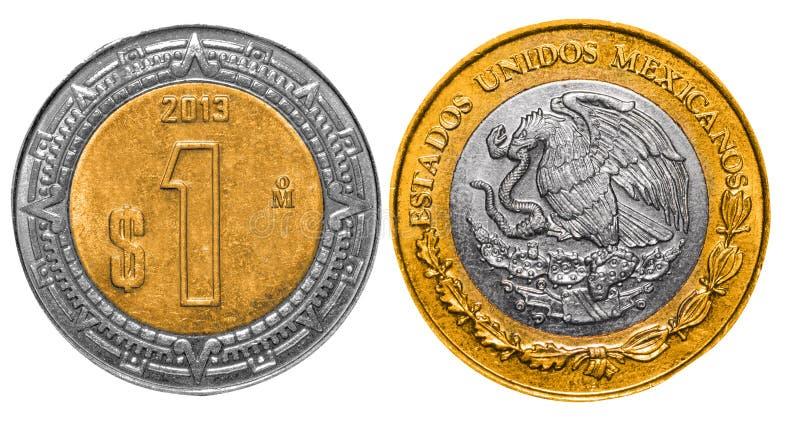 Los Pesos mexicanos 1 apoyan y afrontan ilustración del vector