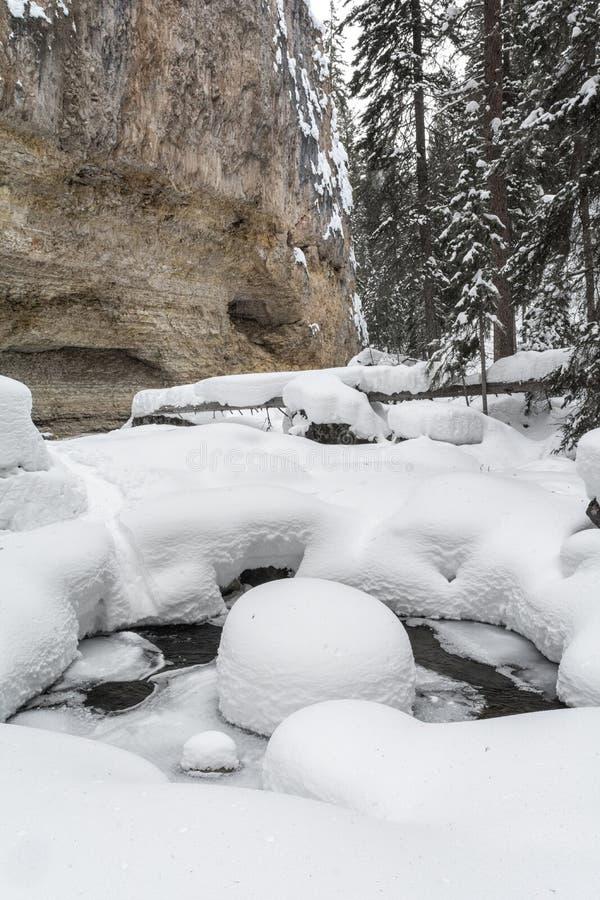 Los pies de nieve entierran la corriente corriente ancha en barranco imágenes de archivo libres de regalías
