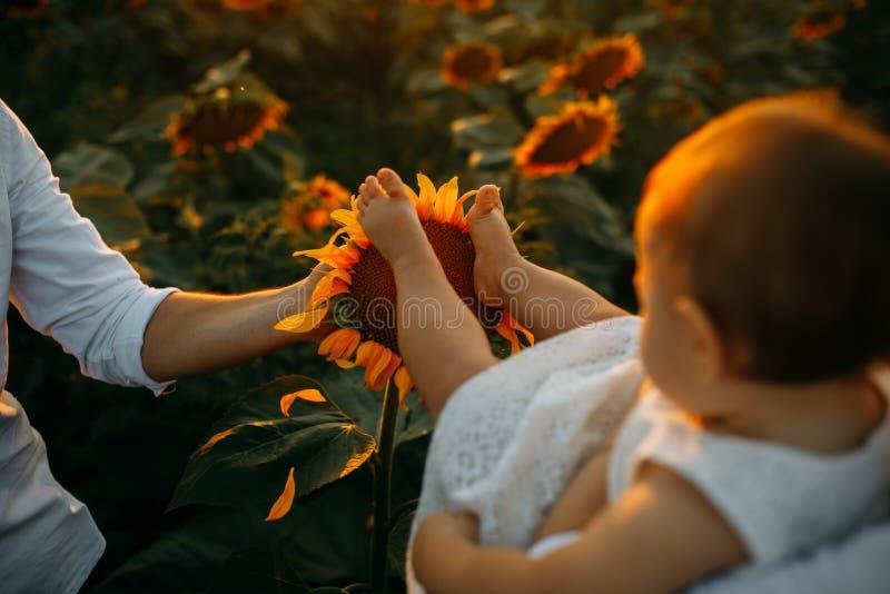 Los pies del bebé están en inflorescencia del girasol imágenes de archivo libres de regalías
