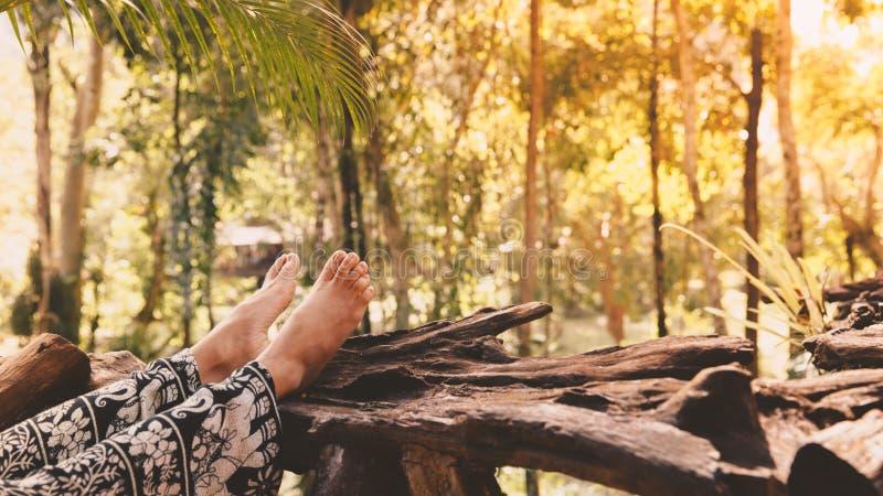 Los pies desnudos de una mujer joven en un árbol abren una sesión el bosque tropical imágenes de archivo libres de regalías