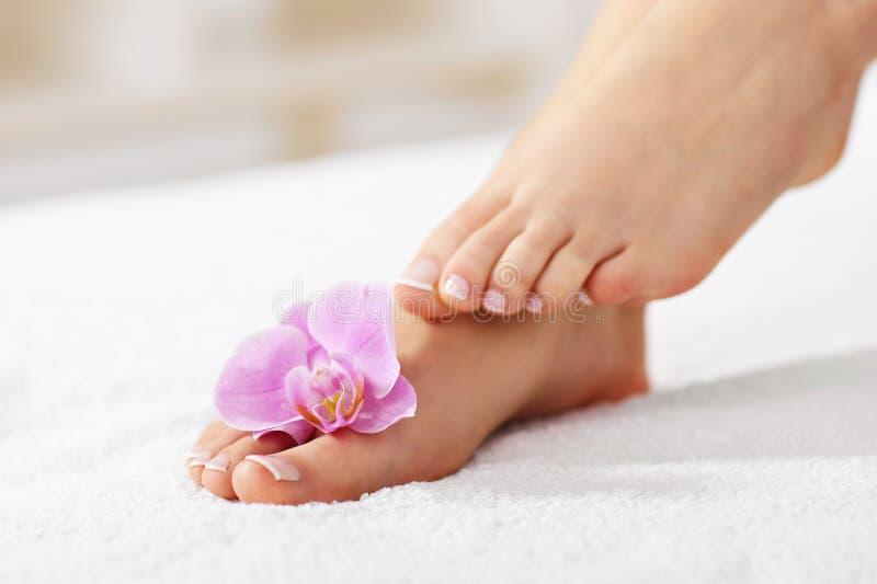 Los pies femeninos suaves con pedicura francesa y las flores se cierran para arriba foto de archivo