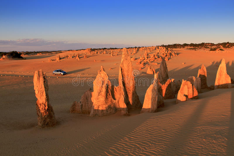 Los pináculos abandonan, Australia occidental imagen de archivo libre de regalías