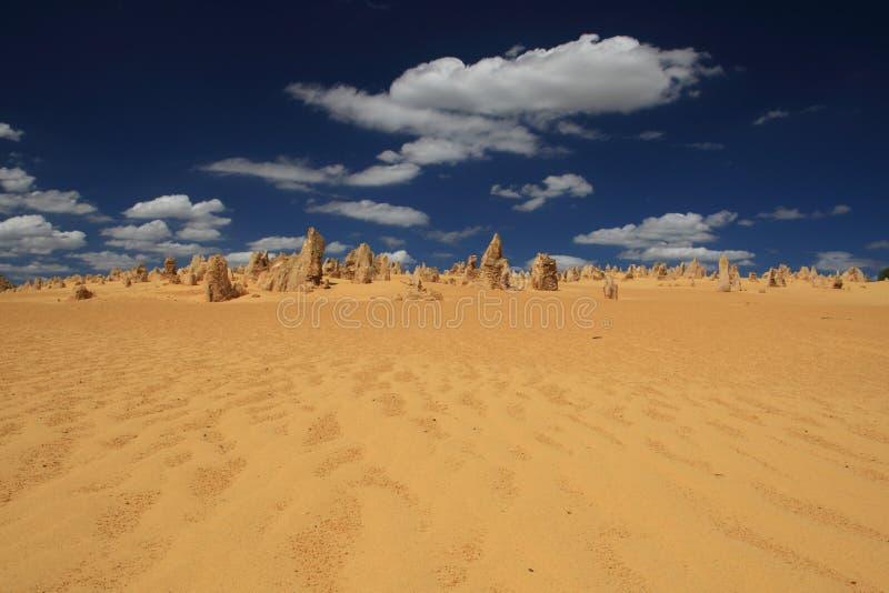 Los pináculos abandonan, Australia occidental imagen de archivo