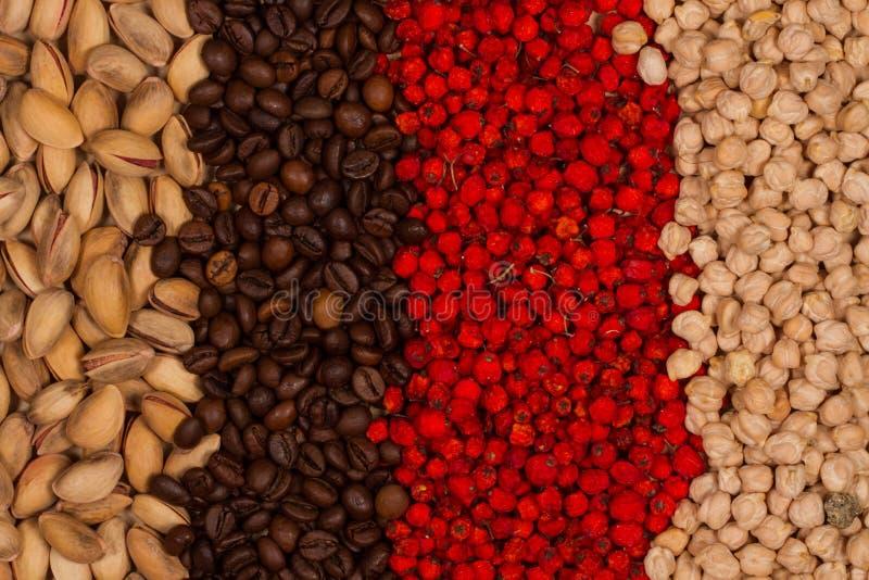 Los pistachos, garbanzos, asaron los granos de café y secaron bayas de serbal fotografía de archivo