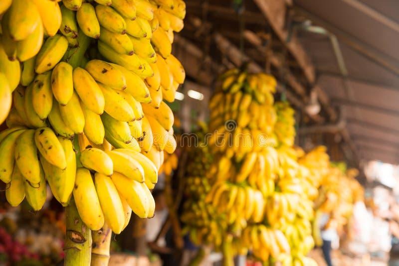 Los plátanos agrupan en tienda de la fruta en Sri Lanka fotos de archivo