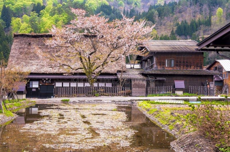 Los pueblos históricos de Shirakawago imagen de archivo libre de regalías