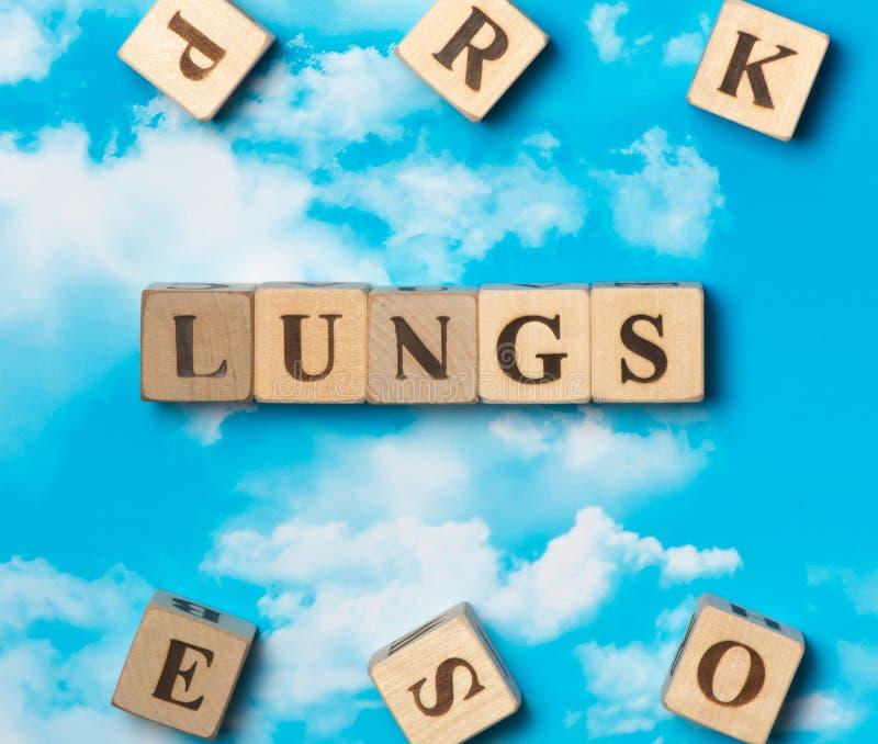 Los pulmones de la palabra fotografía de archivo