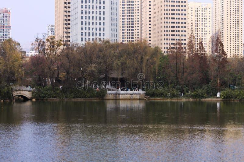 Los rascacielos ven sobre Lotus Pond foto de archivo libre de regalías