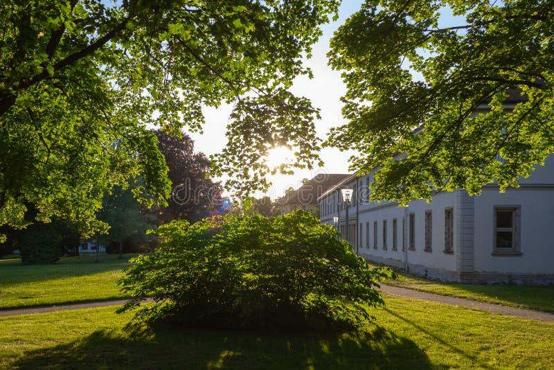 los rayos de sol en una ciudad parquean en puesta del sol de la tarde de la primavera fotos de archivo